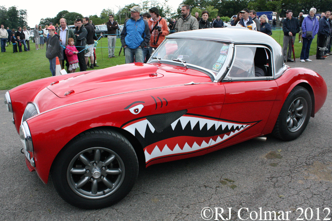 Austin Healey (Uncobra), Classics at the Castle, Sherborne Castle