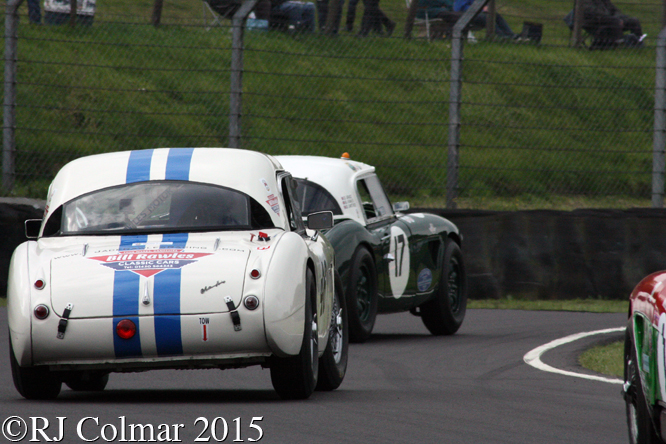 Austin Healey 3000 Mk1, David Grace, Castle Combe