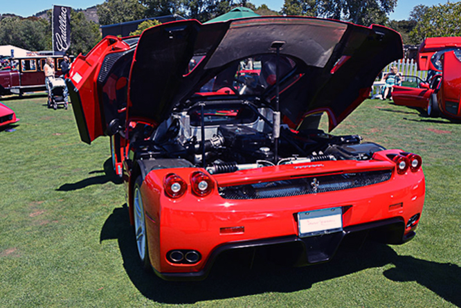 Ferrari Enzo, The Great Ferraris, The Quail