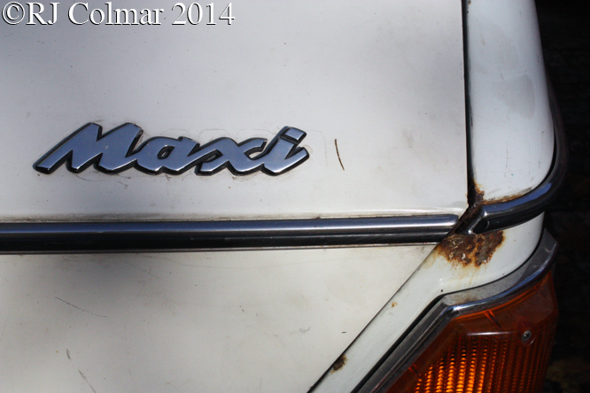 Austin Maxi, Avenue Drivers Club,