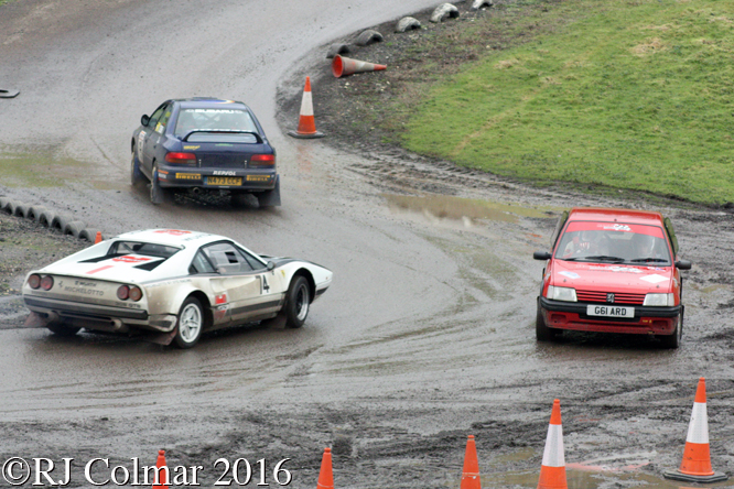 MGJ Engineering Winter Stages Rally, Brands Hatch